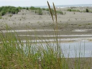 The Dunes Rv Resort