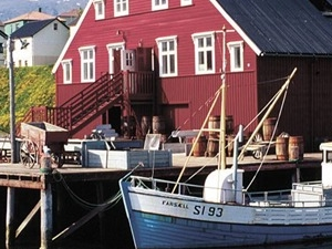 The Herring Museum