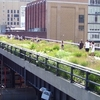 The High Line At 20th Street