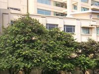 Far Eastern University