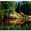 The Kámon Arboretum of the Institute of the Forestry Research