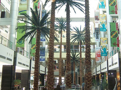 The Mall Of Syria
