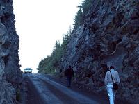 The McCarthy Road