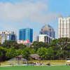 The Midtown Skyline From Piedmont Park