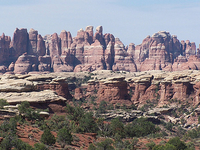 The Needles District