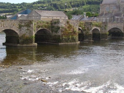 The Old Bridge, Carrick On Suir
