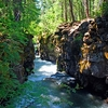 The Rogue River Gorge