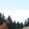 The Weddle Bridge Spans Ames Creek In Sweet Home Oregon