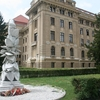 The White Rose Of The Revolution Memorial, Debrecen
