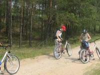 The Wizna Swamp trail