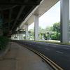 Thomson Road Beneath Lornie Viaduct