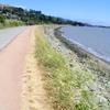 Tiburon Trail