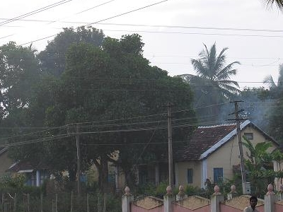 Tiled Houses Seen On A Foggy Morning In Bhadravathi