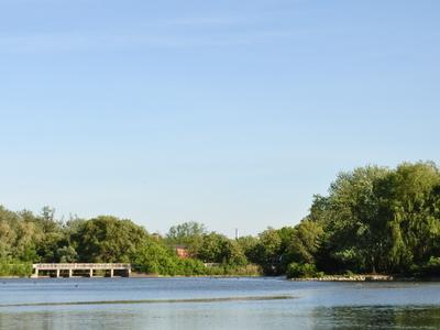 Toogood Pond