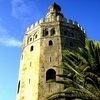 Torre Del Oro (Tower Of Gold) In Sevilla - Spain Andalusia
