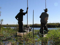 Okavango Delta