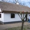 Toyhouse, Mezőkövesd