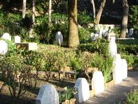 Trafalgar Cemetery