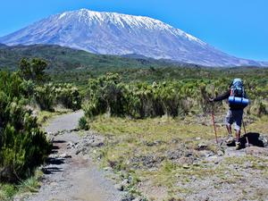 Trekking Mount Kilimanjaro Photos