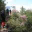 Trekking Yushan