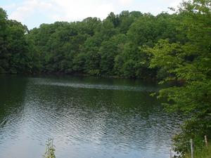 Triadelphia Reservoir