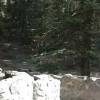 Tub Springs State Wayside
