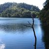 Twin Lake Kayak