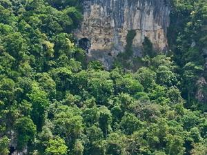 Tabon Caves