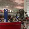 Terminal 3 Of Capital Airport