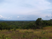 Maiko Parque Nacional