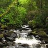 Torc Waterfall At Killarney National Park 2