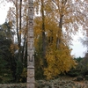 East Montlake Park
