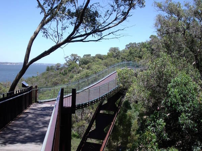 Tree Top Walk Kings  Park
