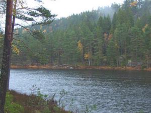 Tresticklan National Park