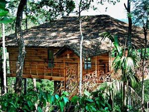 Tranquil Plantation Hideaway