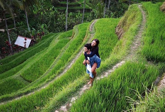 Sweet Escape Ubud Bali Day Tour Photos