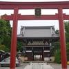 Red Torii At Umenomiya Shrine