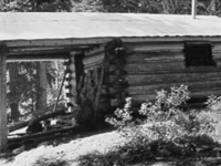 Upper Park Creek Patrol Cabin