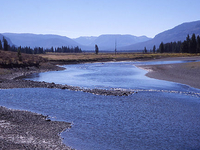 Upper Yellowstone River