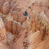 UT Cedar Breaks View From Top