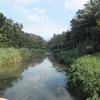 Vamanapuram River That Flows Through Vithura