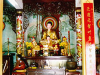 Vien Giac Pagoda