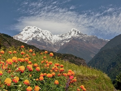 View Annapurna South