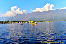 View Dal Lake - Srinagar J&K
