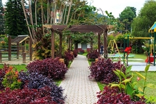 View Garden At Cameron Highlands - Pahang