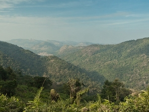 Khao Yai National Park & Elephant Ride Day Trip From Bangkok Photos
