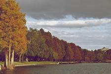 View Lake Eola Park - Orlando