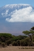 View Mount Kilimanjaro From Tanzania