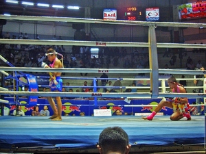 Muay Thai Kickboxing With Ringside Seats & Private Transfer Photos