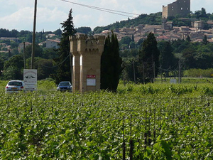 Orange and Chateauneuf du Pape Small Group Day Trip Photos
